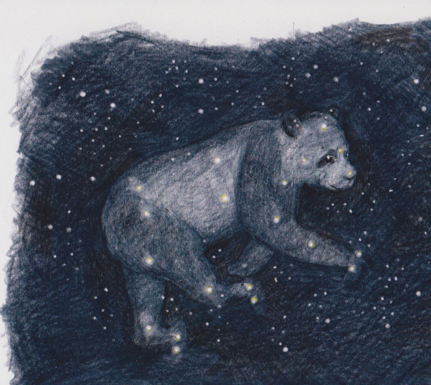 Der Bär, der Albert und die aufgehenden Sterne